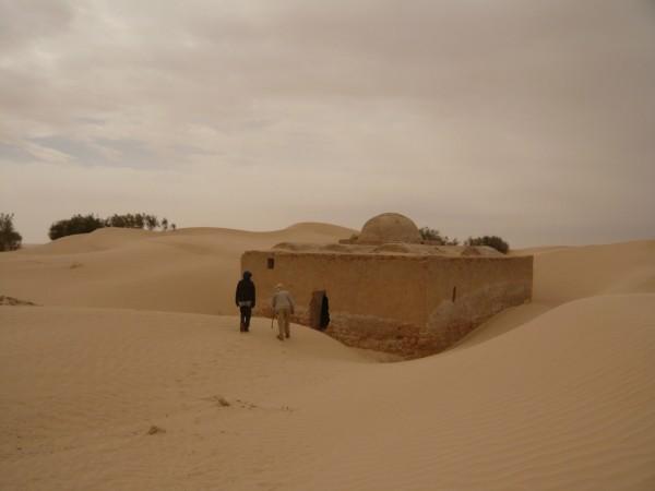 Woestijn reis op maat