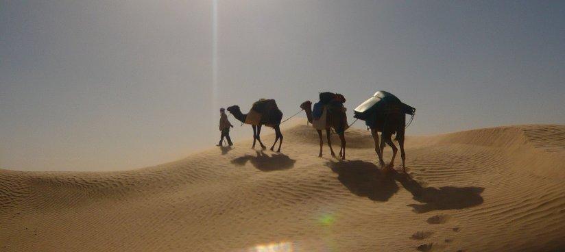 woestijn_slide3_home